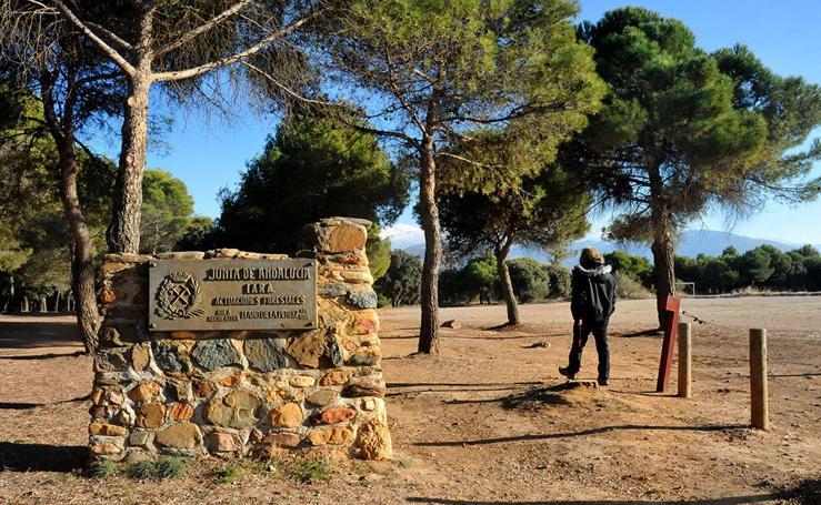 Áreas recreativas para hacer barbacoas en Granada