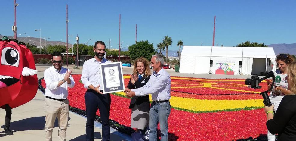 Almería logra el mosaico de verdura más grande del mundo