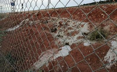 Cazadores de Jaén denuncian el tapado de madrigueras con cemento por Adif, «una masacre de conejos»