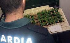La Guardia Civil detienen en Otura a dos albaneses que llevaban 14 kilos de 'maría' en su coche