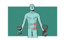 El cáncer de colon podrá detectarse 15 años antes de que dé la cara con un análisis de sangre