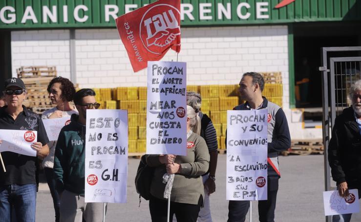 Protesta en Motril por el despido de dos trabajadores de la empresa de manipulado de frutas tropicales Procam