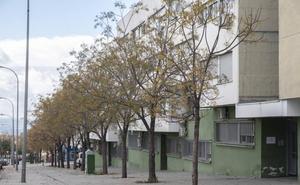 La Junta recupera 15 pisos sociales en zona Norte y halla marihuana en cinco