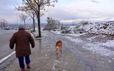 La nieve llega a Granada de la mano de Filomena