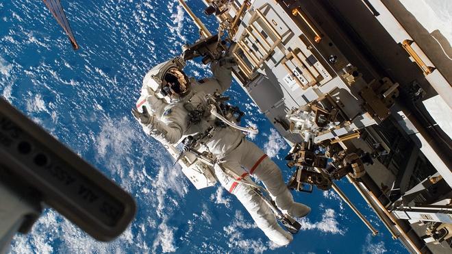 Descubren restos de plancton vivo en el exterior de la Estación Espacial Internacional
