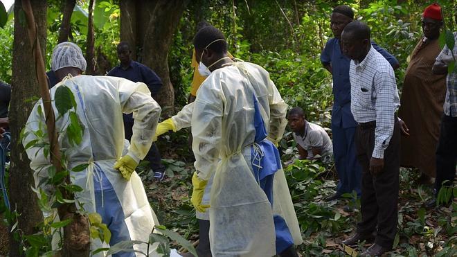Primeros ensayos en humanos de otra de las vacunas contra el ébola