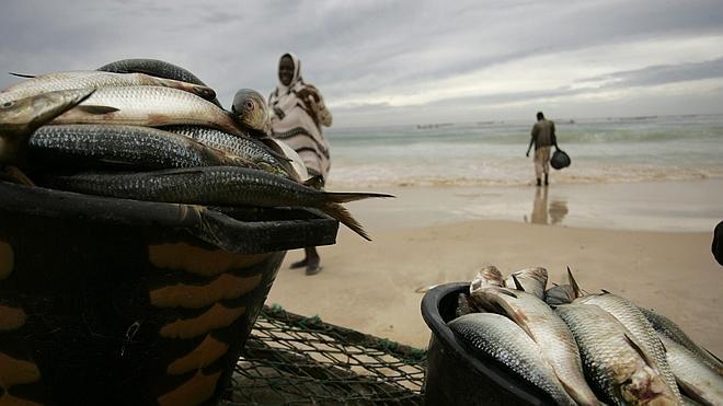La UE renueva el acuerdo pesquero con Mauritania para los próximos cuatro años