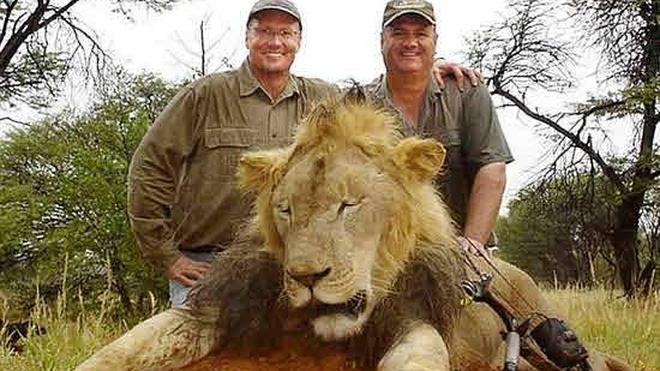 Zimbabue levanta los límites a la caza de leones y otros animales