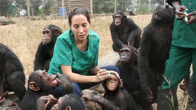 Rebeca Atencia: «Soy madre adoptiva de los chimpancés»