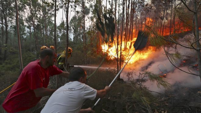 Siguen activos cinco incendios en Galicia, tres de ellos cerca de viviendas