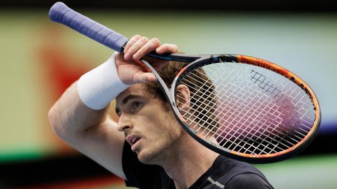 Murray disputará la final del Torneo de Viena tras la lesión de Ferrer