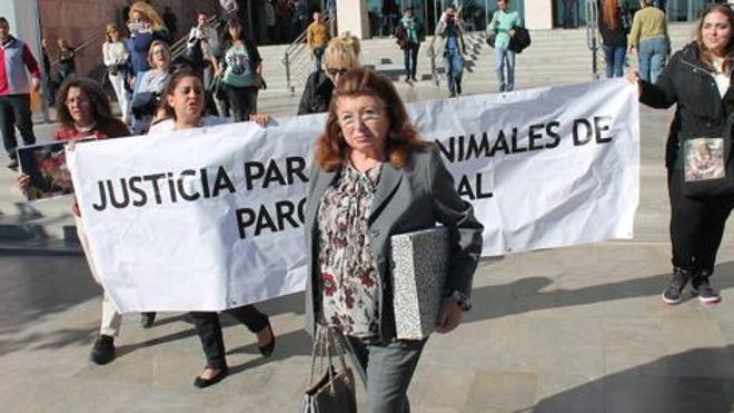 La presidenta de la protectora de Torremolinos, condenada a casi cuatro años de cárcel