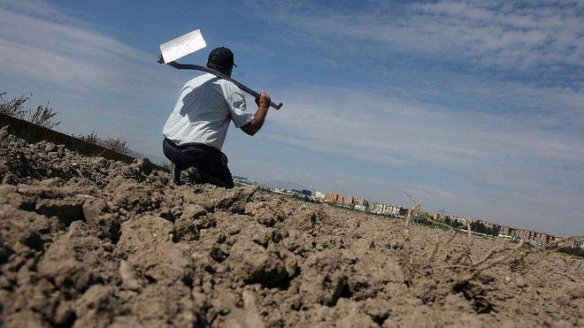 COAG exige a la Junta que adopte medidas para hacer frente a la sequía