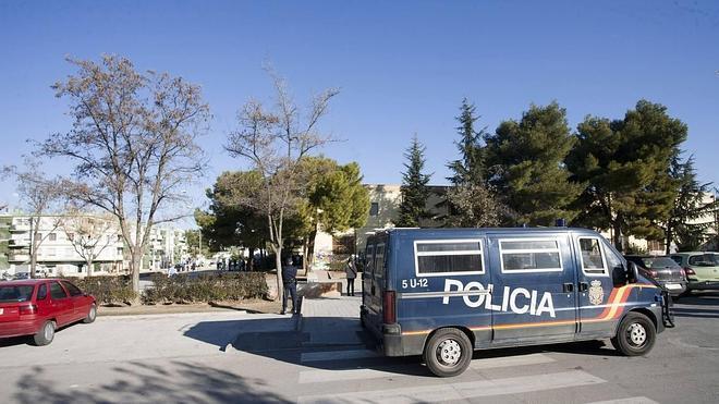 El Ayuntamiento debe pagar 4.135 euros por la caída de un árbol sobre un vehículo