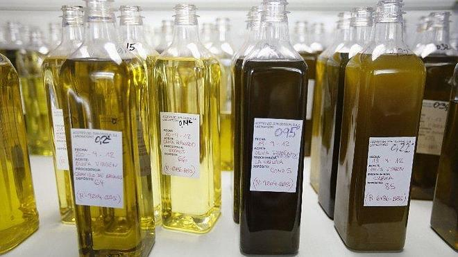 El aceite de oliva virgen extra solo se encarece un 29 % desde el origen
