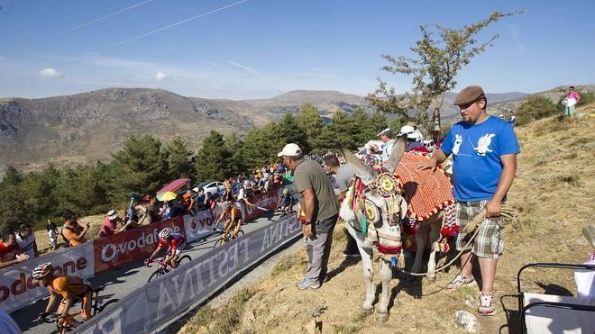 Cartel de lujo para la Vuelta a Andalucía