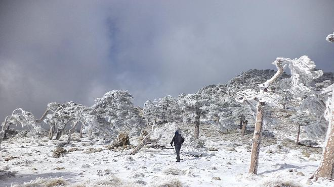 Jaén, en alerta naranja por nevadas