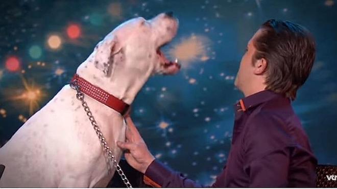 La increíble versión de esta perra del 'I Will Always Love You de Whitney Houston