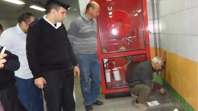 Liberan a un gato en Egipto que pasó 5 años atrapado en un muro y que sobrevivió gracias a un anciano
