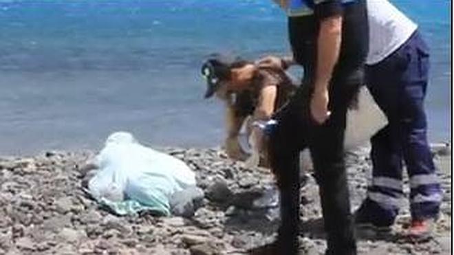 Muere una mujer en Gran Canaria al ser degollada por la tabla de un windsurfista