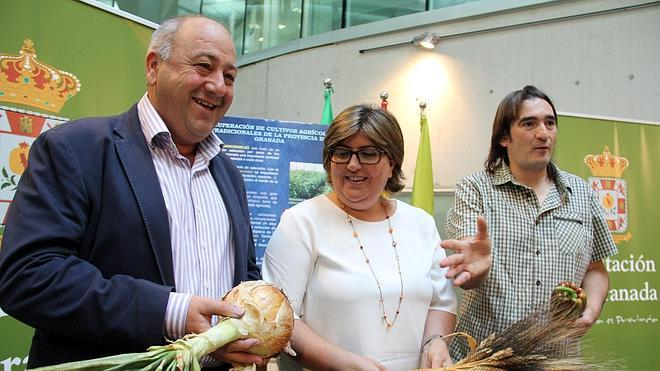 Melegís reunirá cultivos tradicionales y semillas autóctonas en el VIII Festival Hortofrutícola