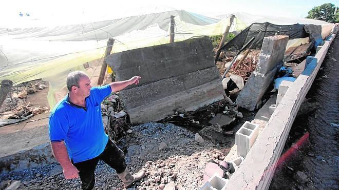 La Junta destinará fondos a los invernaderos de Carchuna afectados por la última tormenta