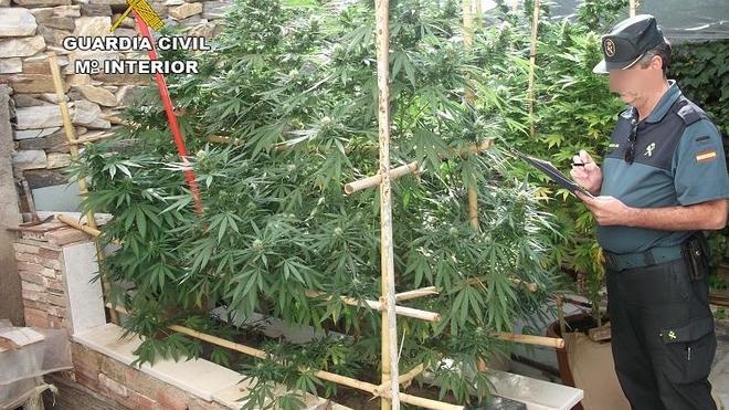 La marihuana 'se muda' a los pueblos