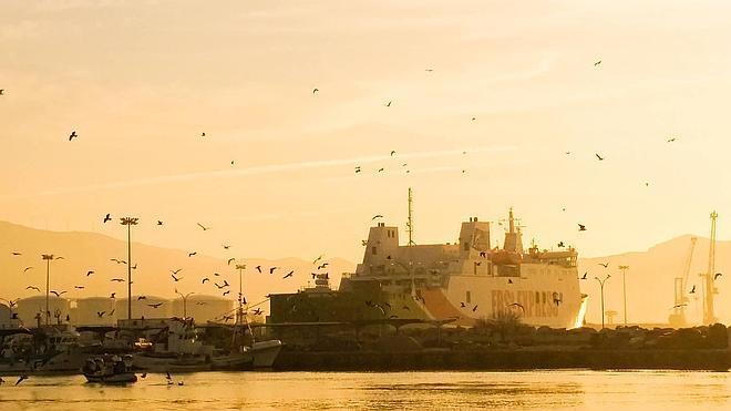 El Gobierno garantiza que la solución de los inspectores para el Puerto está en marcha