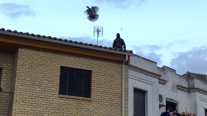 La pava de Cazalilla se queda en el tejado