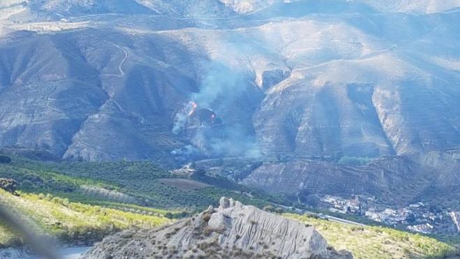Controlado el incendio forestal declarado en Dúdar