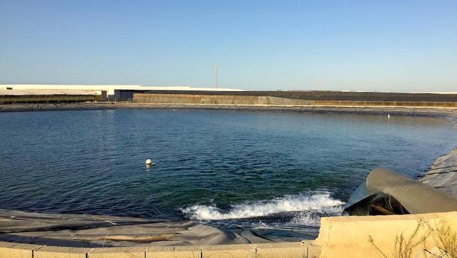 Los regantes del Bajo Andarax empiezan a recibir agua desalada tras 15 días sin riego
